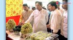 Nariman Point hosts festival to encourage grape farming