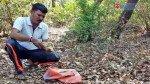 7-foot long snake caught meandering in Tilak Nagar