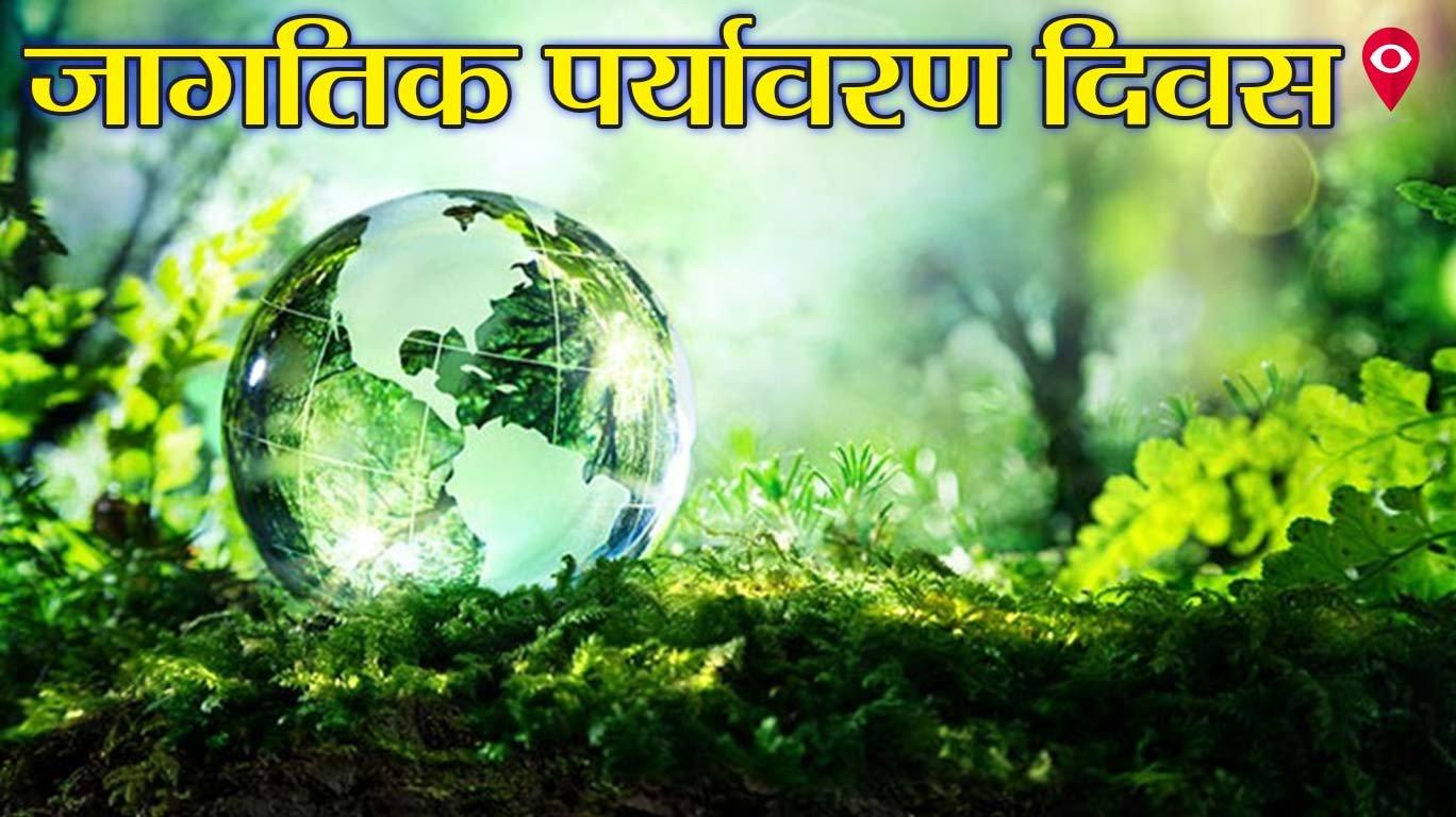 विश्व पर्यावरण दिवस, विकास के अंधे घोड़े पर सवार इंसान