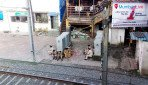 No more jaywalking across Jogeshwari rail tracks