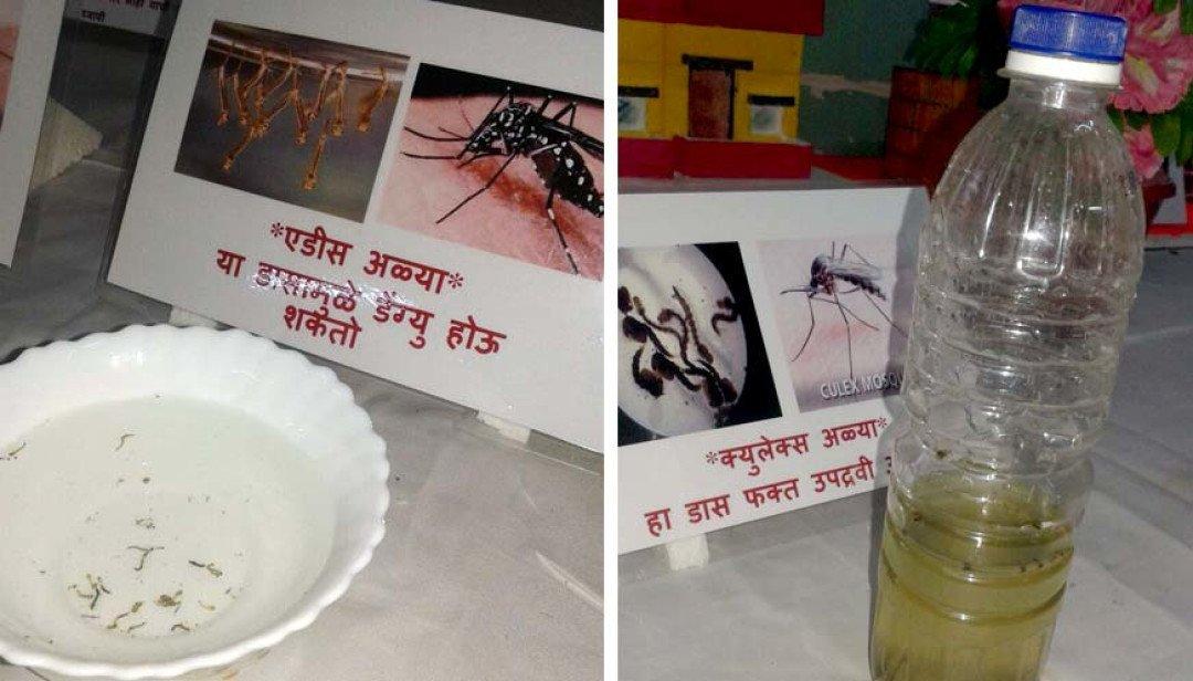 Awareness programme for dengue