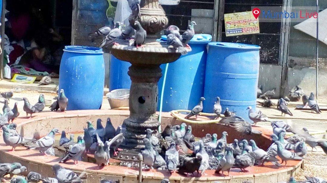 ही पहा मुंबईची ओळख...
