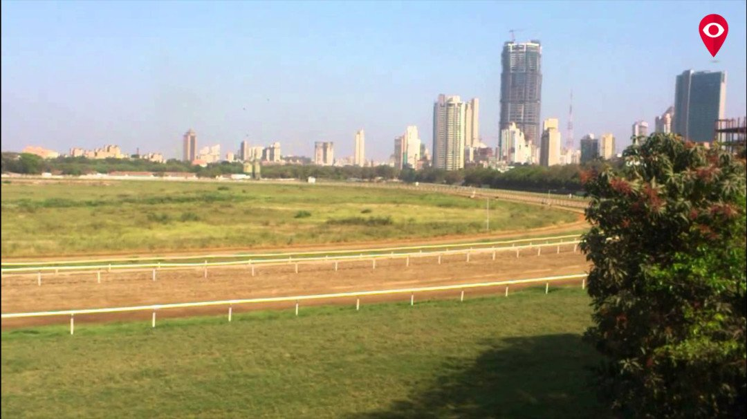 Except Race Course and Wellington Club, other leased plots can now be renewed