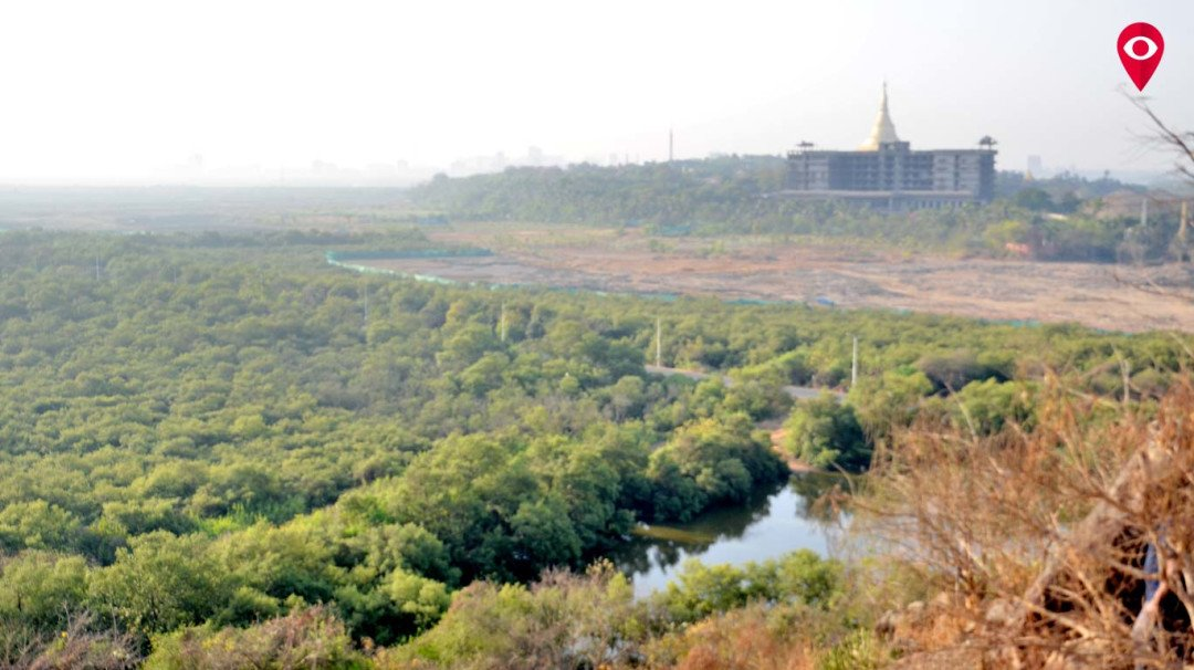 88 Acres of Mangroves Slashed Down in Gorai