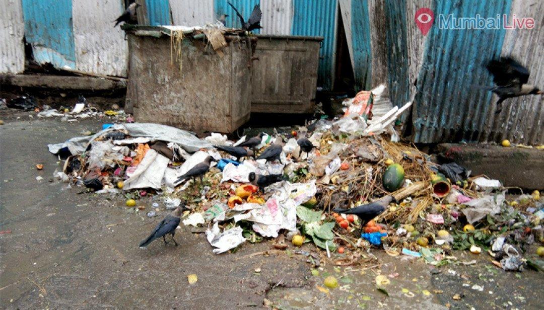 कचरा, मच्छर और त्रस्त लोग