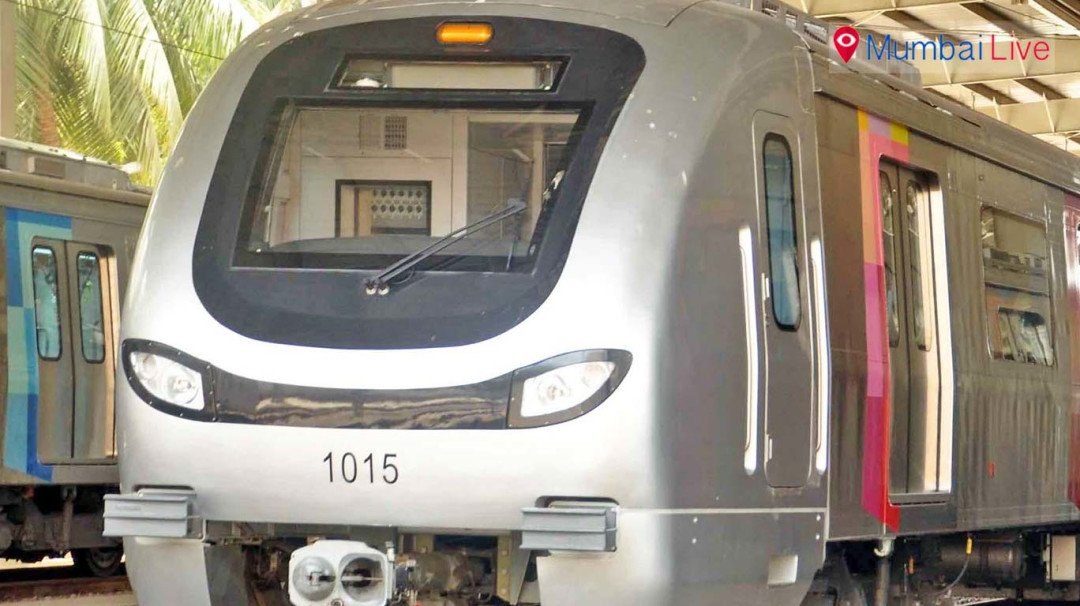 Work on metro troubles Buffaloes in Aarey