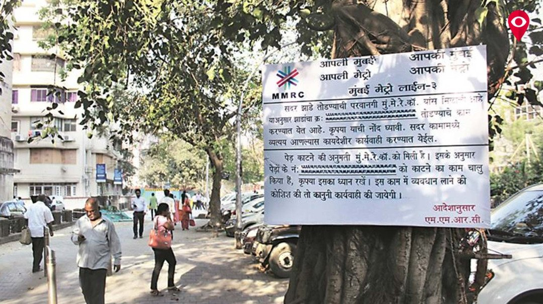 Additional felling of trees for Metro-3