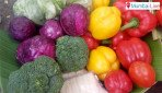 Buy farmers veggies at doorstep