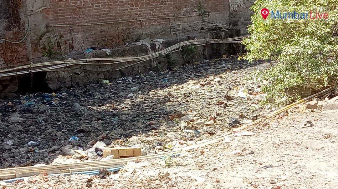 नाले में हुआ कचरा जमा