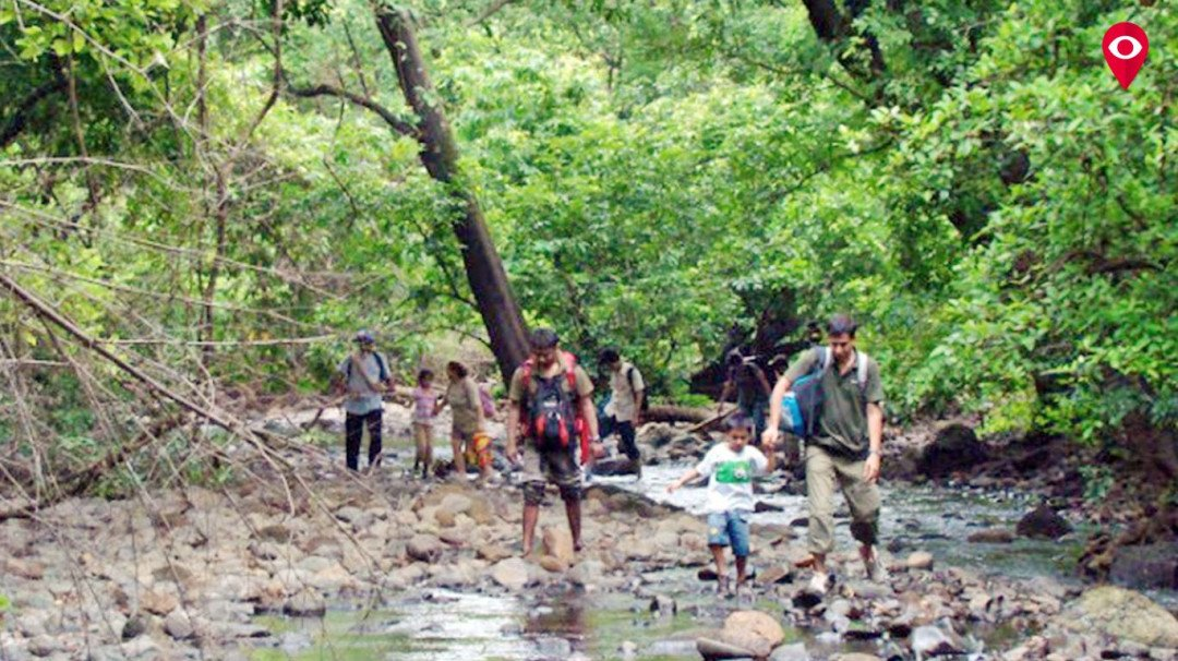 Get ready for a monsoon trek at SGNP this Sunday!
