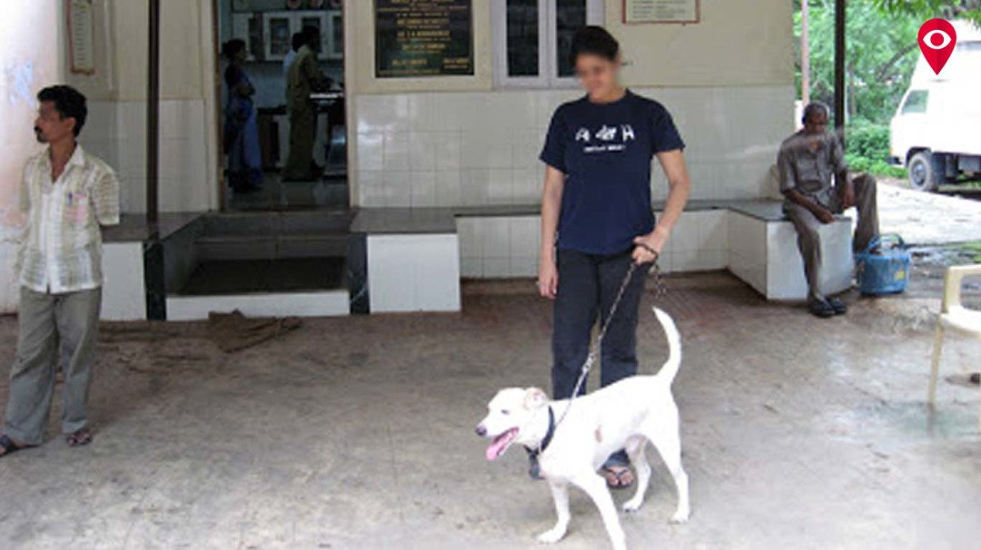 Owners can now stay with pets at Bail Ghoda hospital