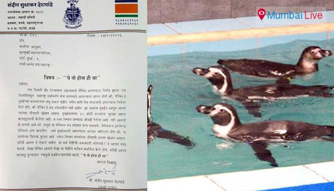 पेंग्विन पर राजनीति