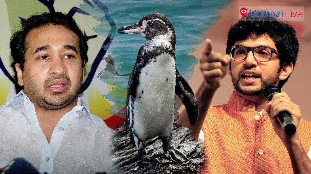 नितेश का शिवसेना पर पेंग्विन 'तीर'