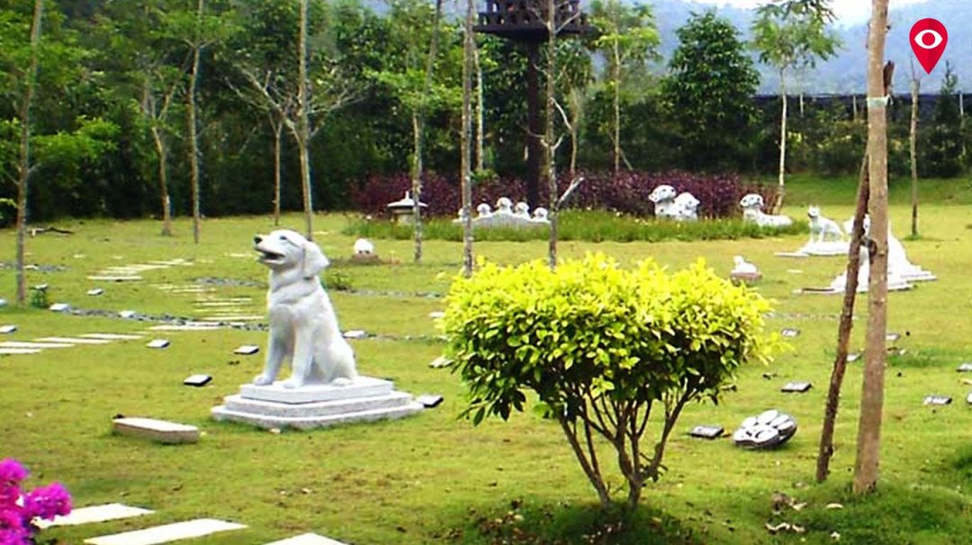 मुंबई में पेट गार्डन को बीएमसी की लाल झंडी