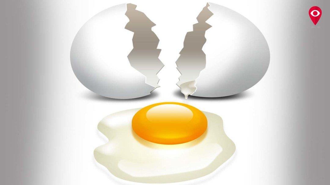 आपका अंडा सुरक्षित, प्लास्टिक का अंडा मात्र अफवाह