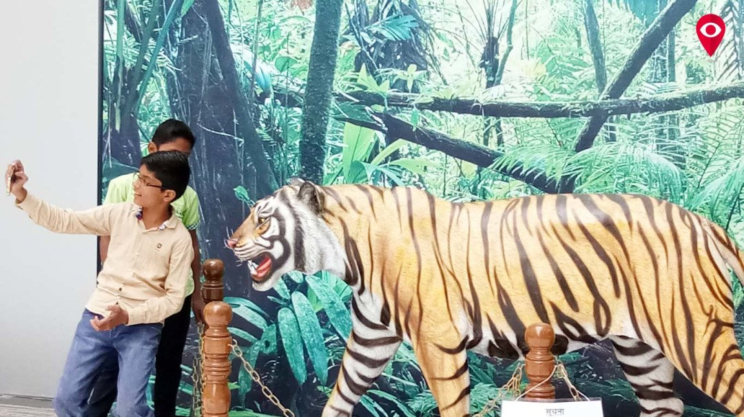 मंत्रालय में 'बाघ'