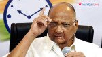 Pawar launches NCP's campaign