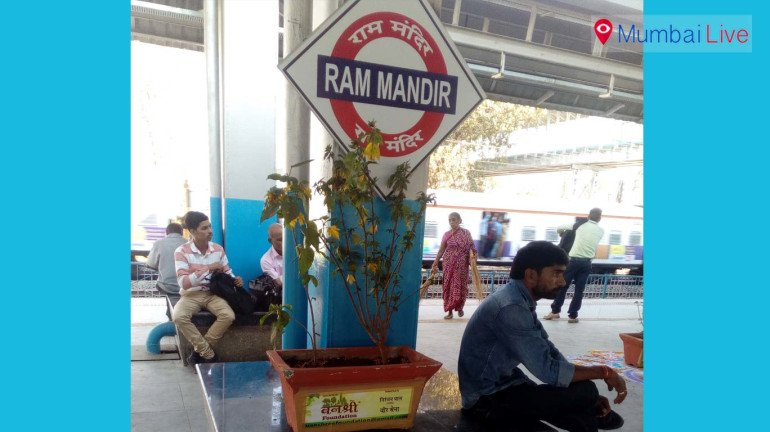 Potted plants causing problem to commuters