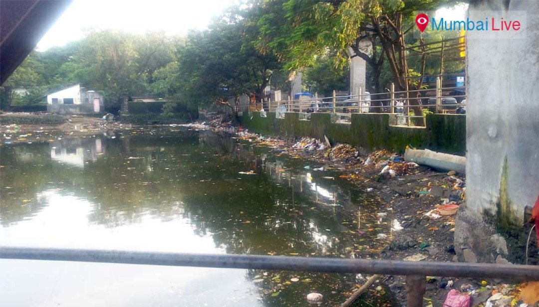 RCF cleans up the Aziz Baug lake