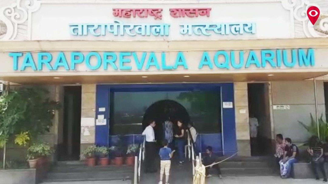 Mumbai's Aquarium as filthy as the sea?