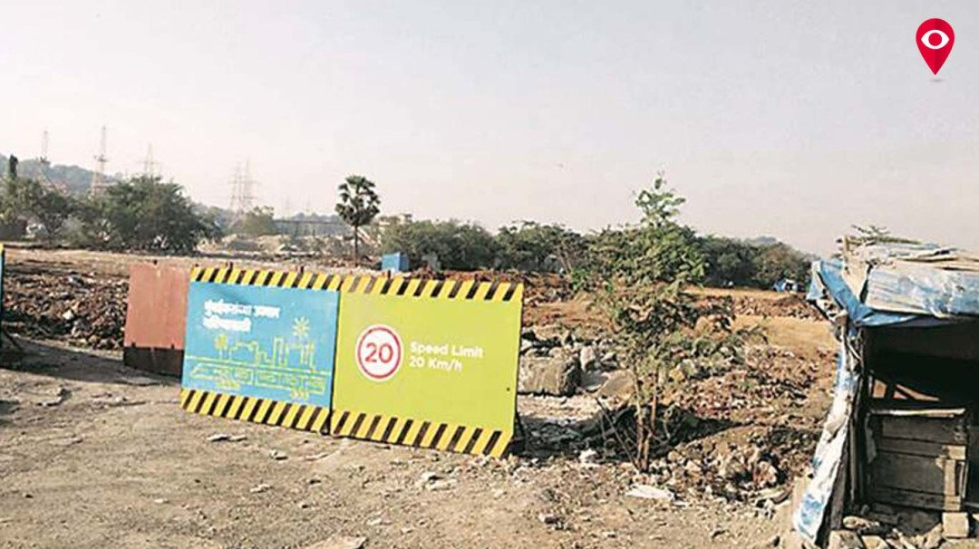 HC clears way for Metro-3: Lifts ban on tree felling