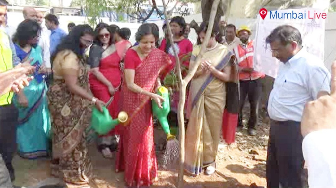 MMRC managing director planted saplings on women's day