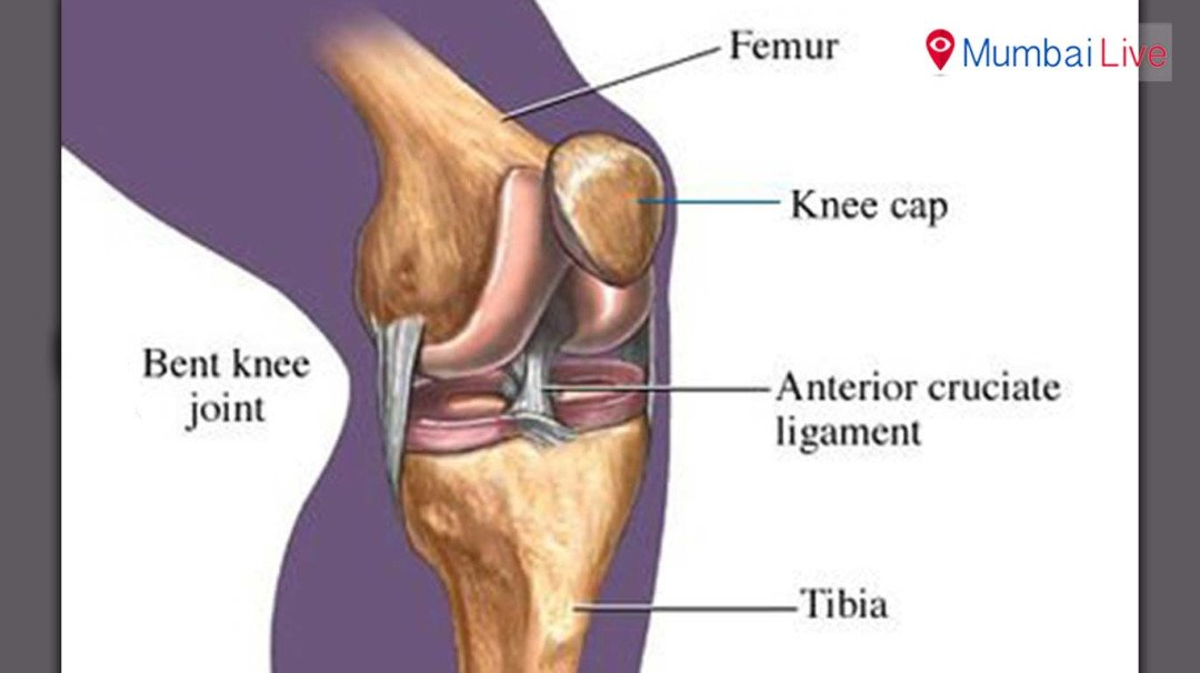 Dipa Karmakar to miss Asian Championship due to knee surgery