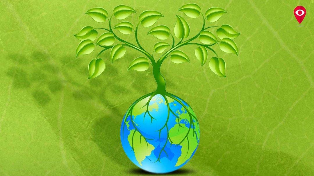जागतिक वसुंधरा दिनी कसं कराल पृथ्वीचं संरक्षण