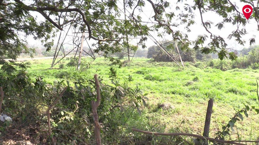 आरे में सिर्फ 76 हेक्टर वनजमीन, 1414 हेक्टर जमीन गई कहां?