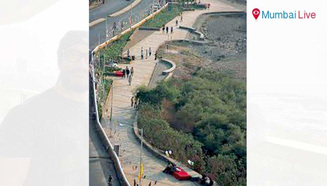BJP chooses Aamir for Save Mangroves drive