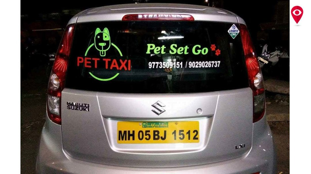 Let's have a look at this Pet Taxi on 'International Dog Day'