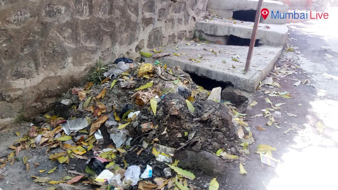 Hold on to your garbage, we are busy with election - Municipal Officer