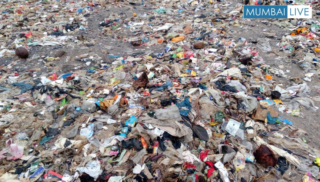भादवा पार्क समुद्रकिनारी कचऱ्याचा खच