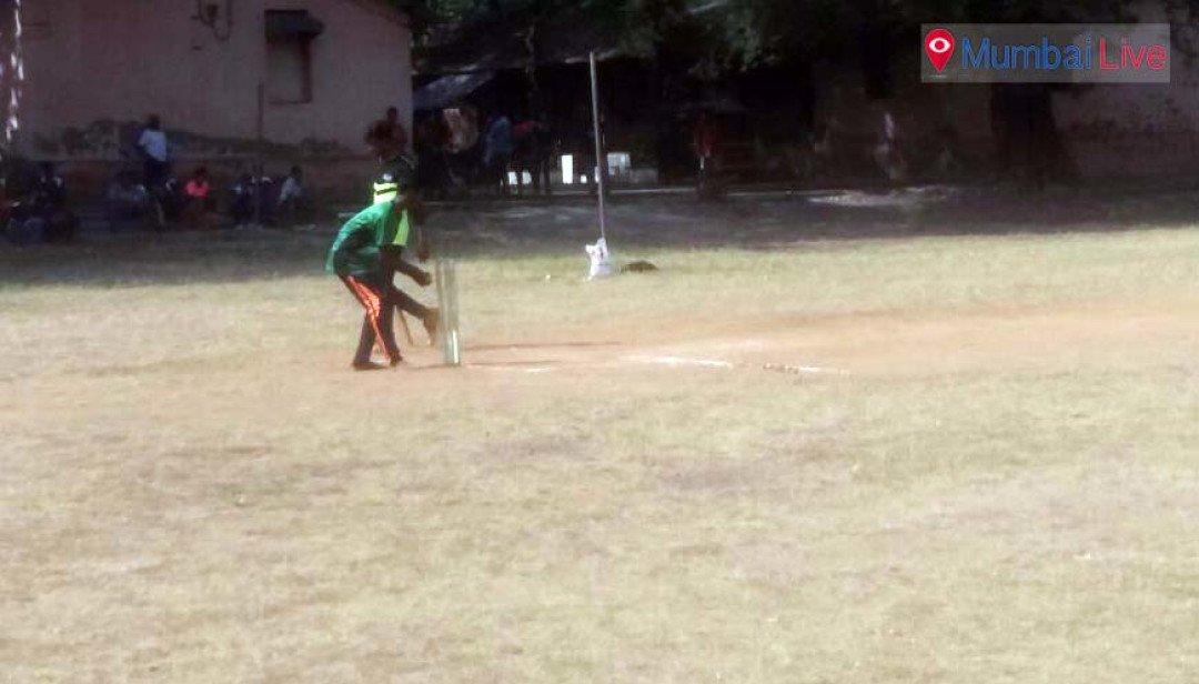 Juveniles play cricket while enjoying Xmas