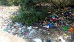 गोराई खाड़ी में कचरे का ढेर