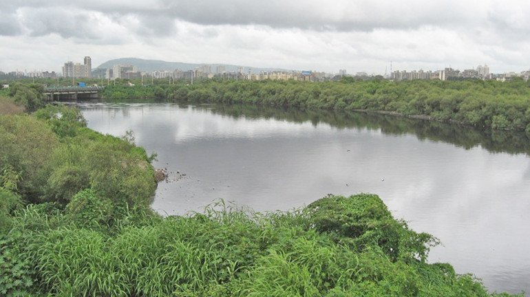Analyses On The Diversion Of Vihar Lake's Surplus Water To Be Concluded Next Year By The BMC