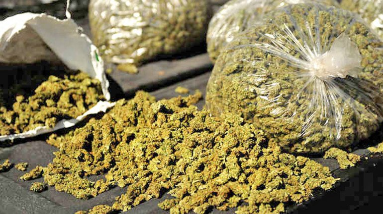 Three held for allegedly running a marijuana bakery in Malad