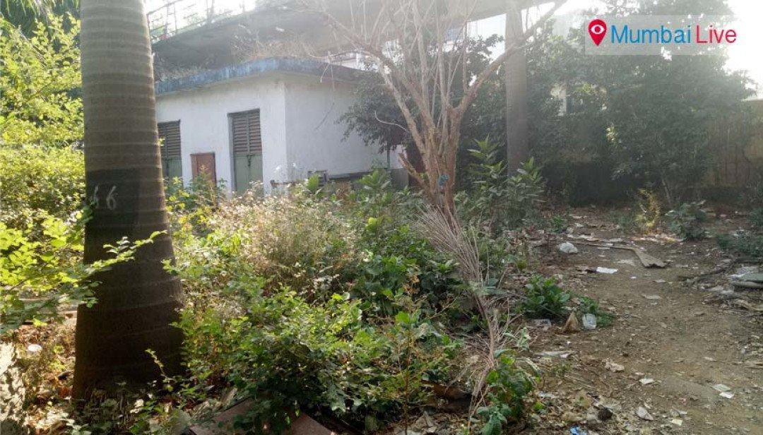 Kirankunj garden on the verge of extinct