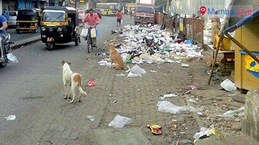 कचरा, दुर्गध और बीमारियां