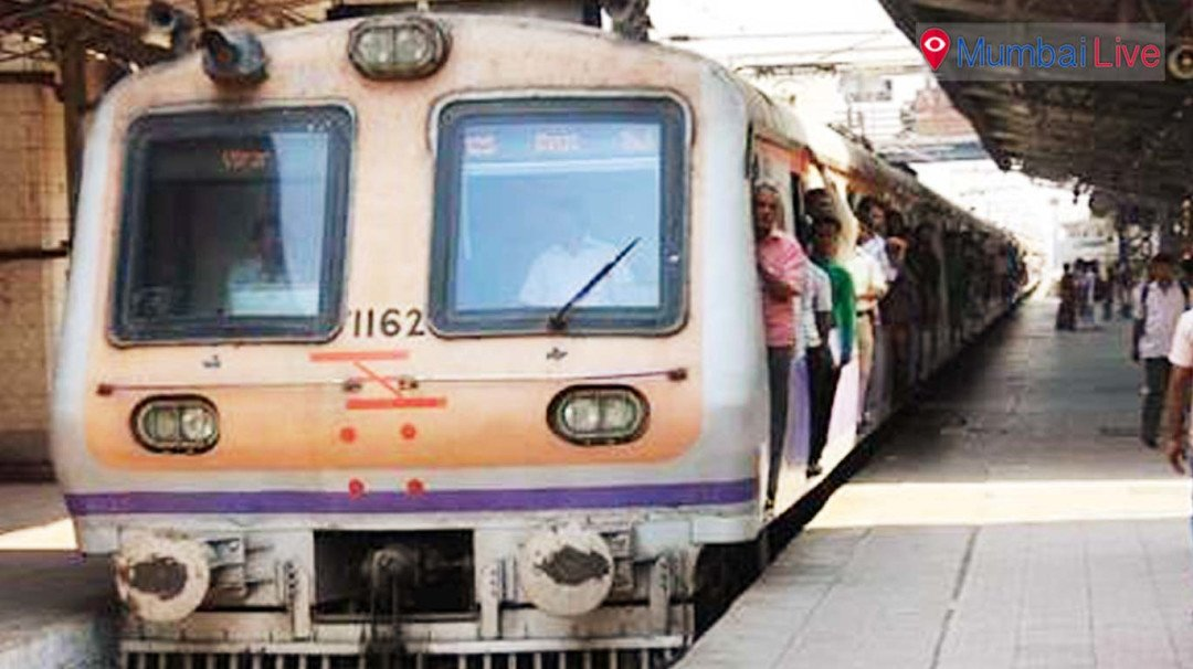 Train services affected on Sunday due to mega block