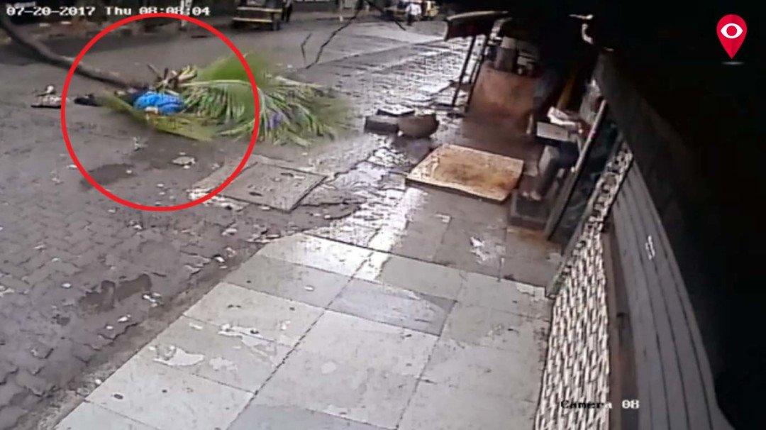 सर पर पेड़ गिरने से महिला की मौत