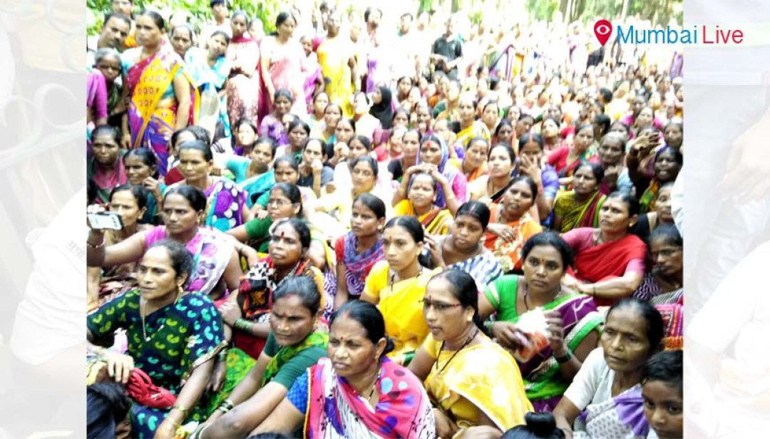 NCP protests in National Park