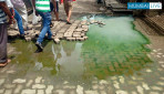 Oshiwara's Damaged Cremation ground