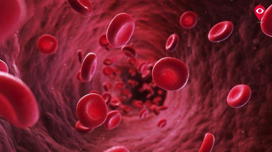 'थॅलेसिमिया' एक गंभीर आजार