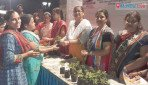A Tulsi plant for each home